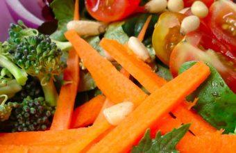 Faut il être végétarien ou carnivore ?
