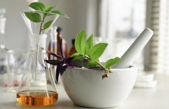 La phytothérapie et l'aromathérapie consiste à utiliser des plantes dans le but de conserver ou recouvrer la santé.