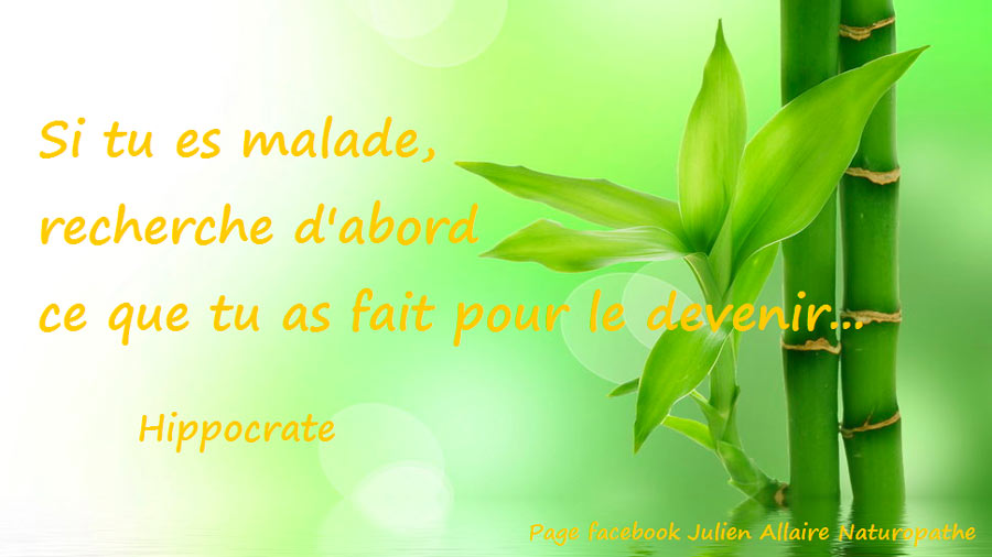 Citation d'Hippocrate sur les causes de la maladie