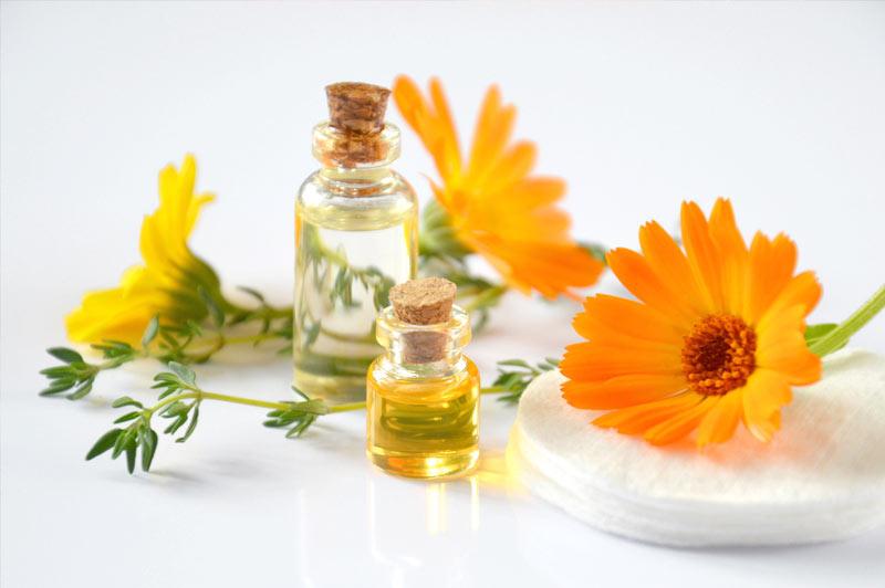 Se soigner par les plantes par la phytotherapie et l'aromathérapie